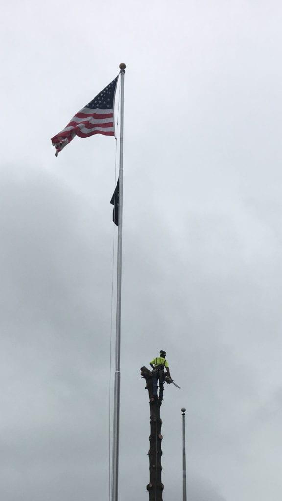 John Tree Flag- IMG_1422-