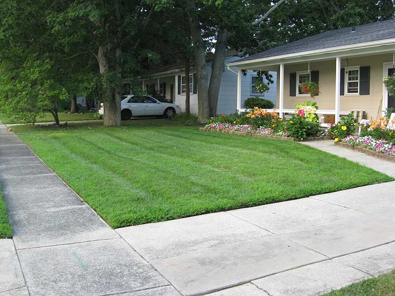 new-jersey-lawn-maintanence